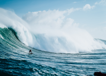 Riding the wave of disruptive change